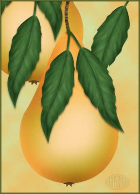 Eine Birne, süß und saftig
